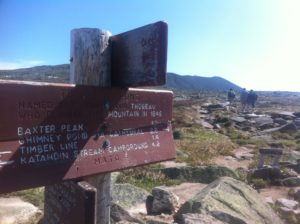 Trail markers on the summit plateau
